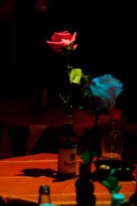 Troubadour rose