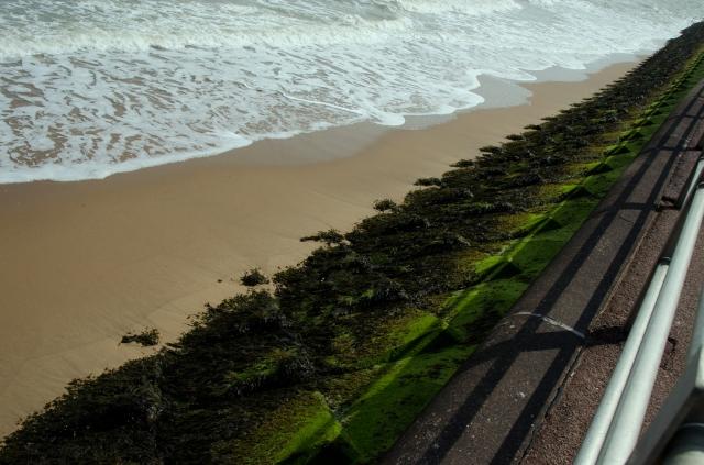 sea lines2